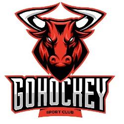 Gohockey-2